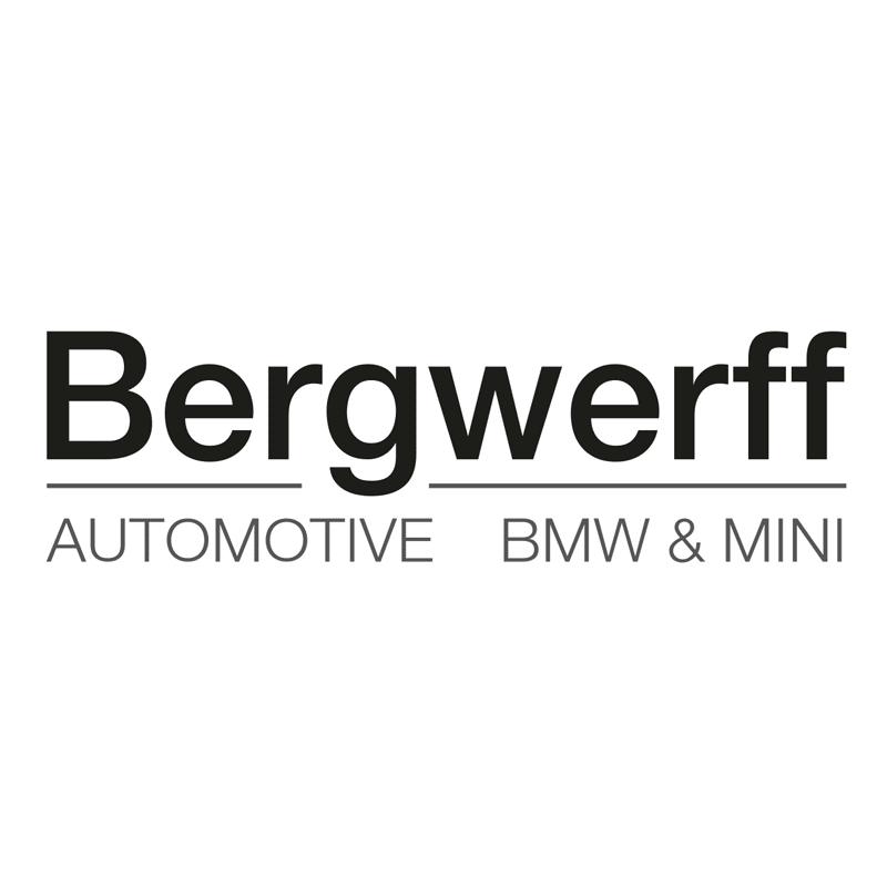 bergwerff automotive logo